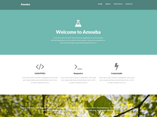 Amoeba One Page Bootstrap Template