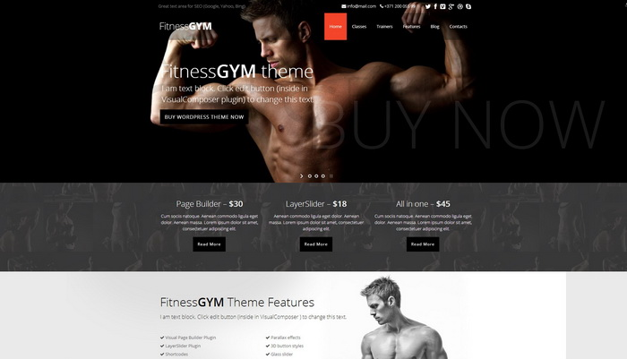 FitnessGYM - WordPress Sport Fitness Theme