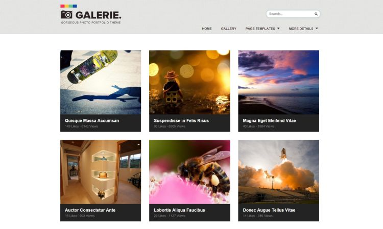 Galerie WordPress Theme