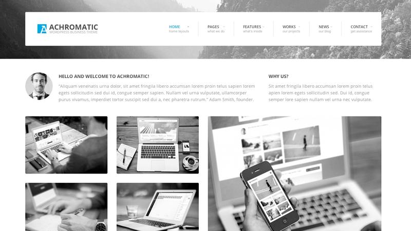 achromatic-business-wordpress-theme