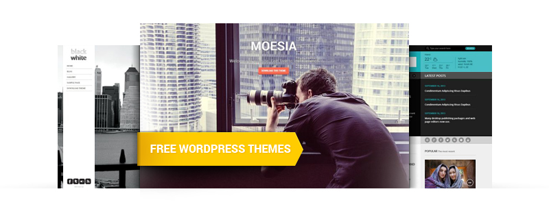 Best Free WordPress Themes in 2014