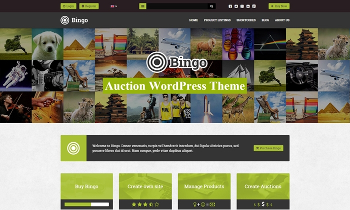 Bingo Auction WordPress Theme