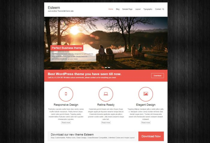 Esteem WordPress Theme