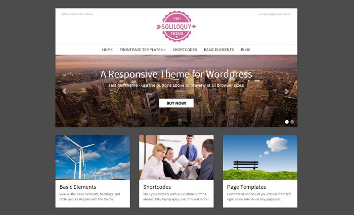 Soliloquy WordPress Theme