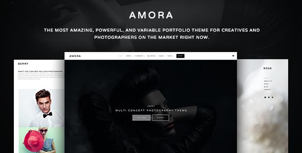 amora-creative-responsive-multiconcept-theme