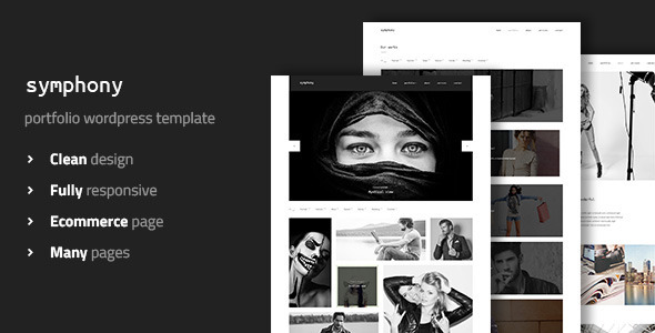 symphony-clean-photography-wordpress-template