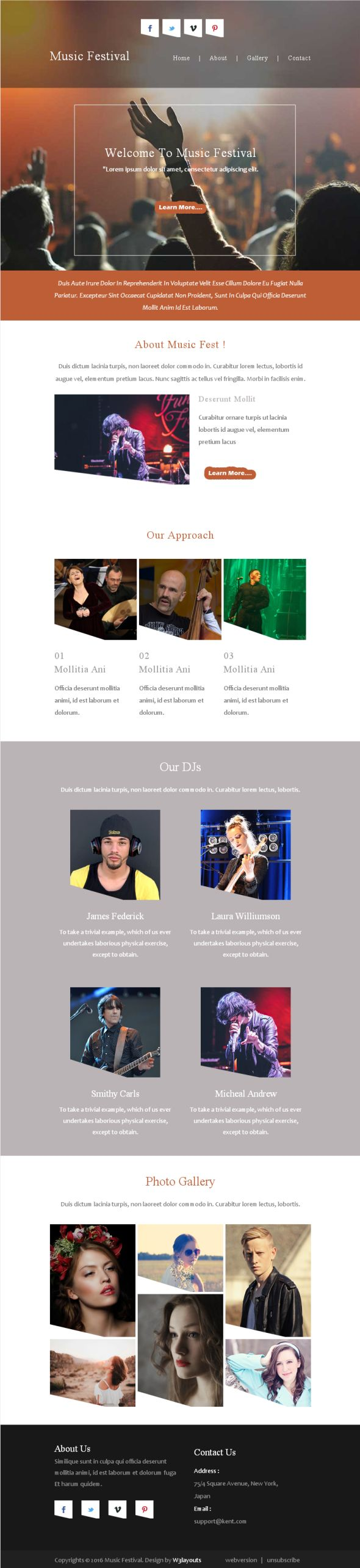 music-festival-newsletter-template