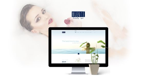 bleute-premium-wordpress-theme