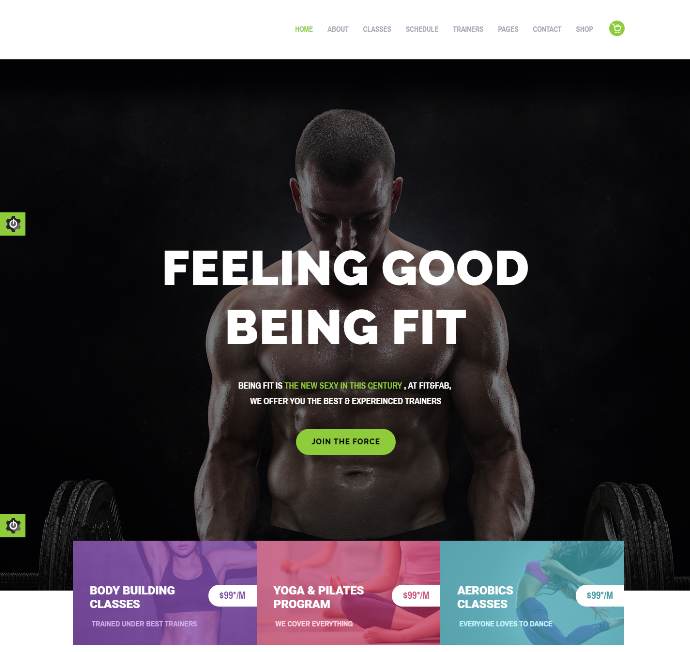 fit-fab-premium-wordpress-theme