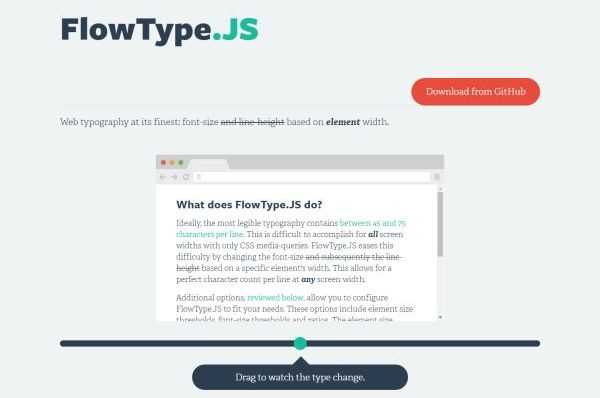 flowtype-js