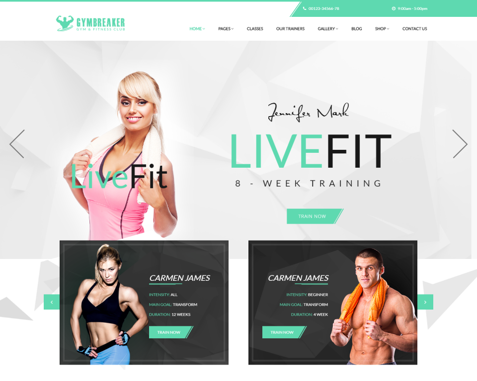 gymbreaker-premium-wordpress
