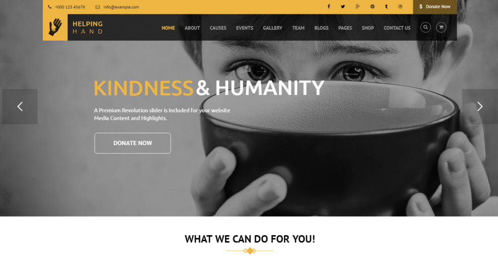 helpinghand-premium-wordpress-theme