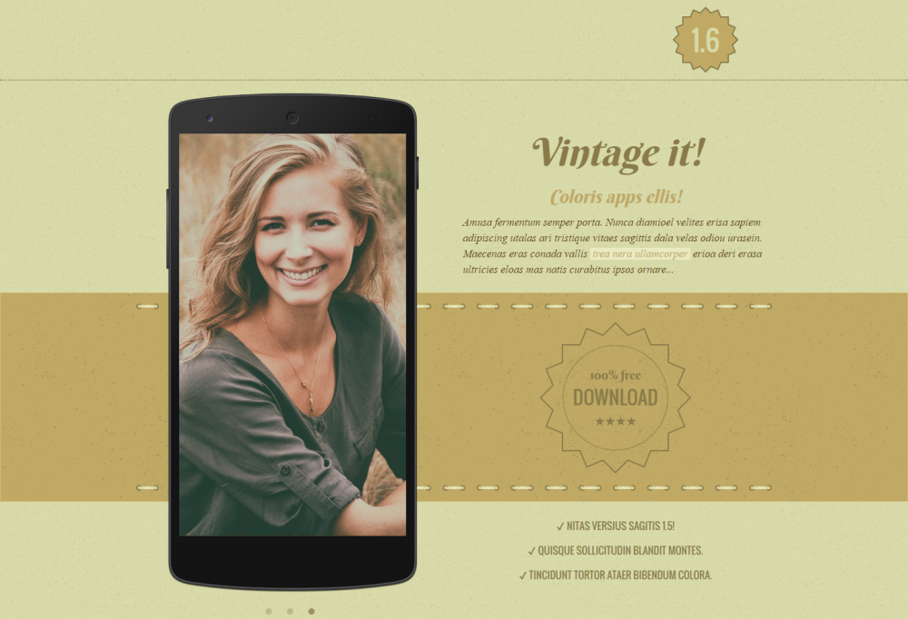 vintage-it-app-website-template