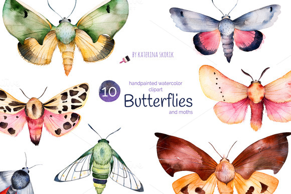 batterflies-moths-premium-illustration