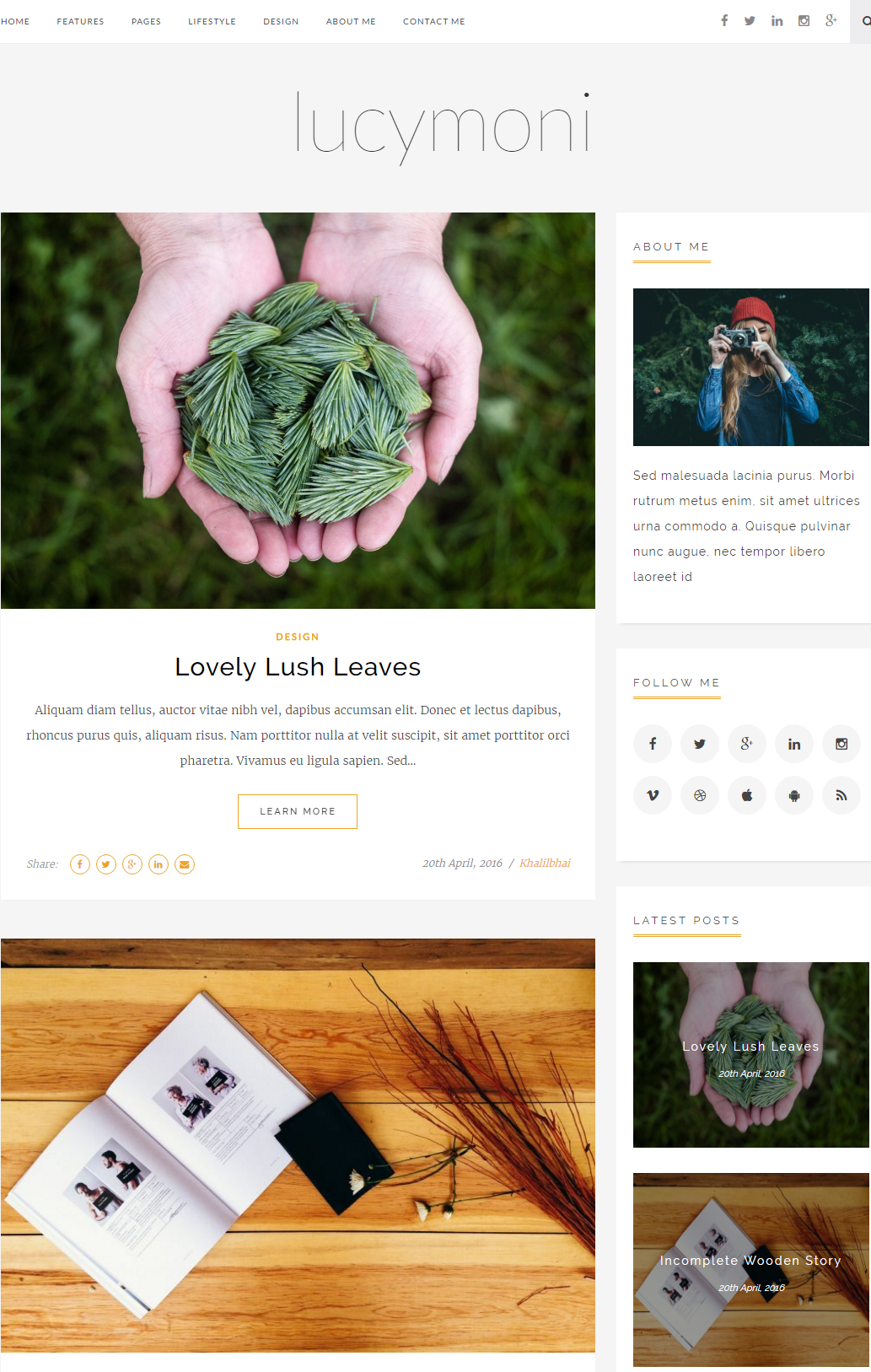 lucymoni-premium-wordpress-theme