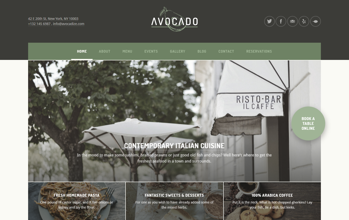 avocado-premium-wordpress-theme