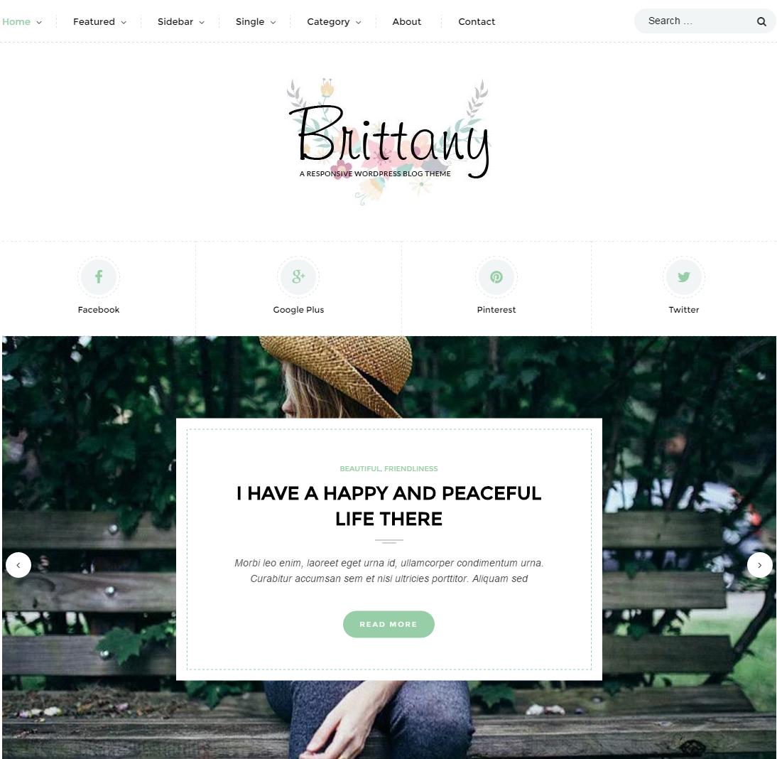 brittany-premium-wordpress-theme