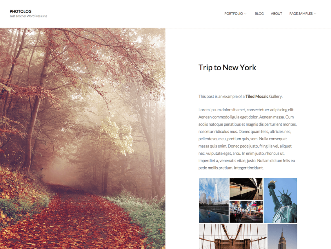 photolog-free-wordpress-theme