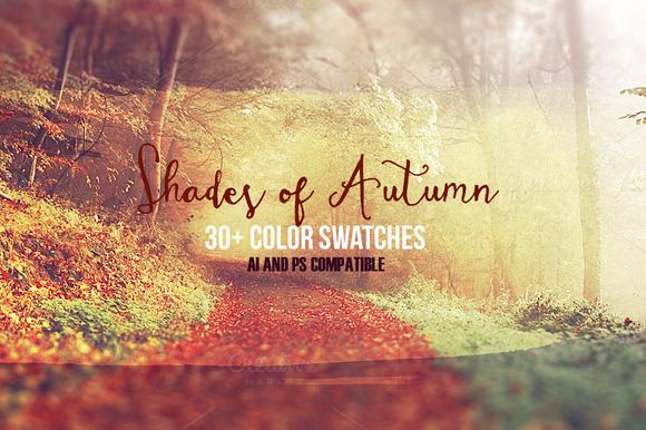 premium-shades-of-autumn