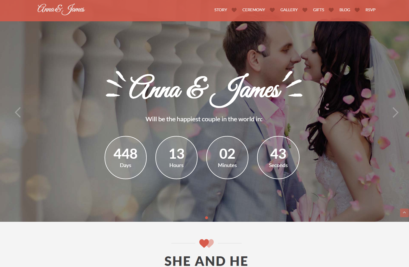amore-premium-wordpress-theme