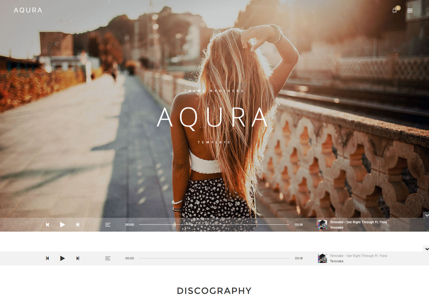 aqura-premium-wordpress-theme