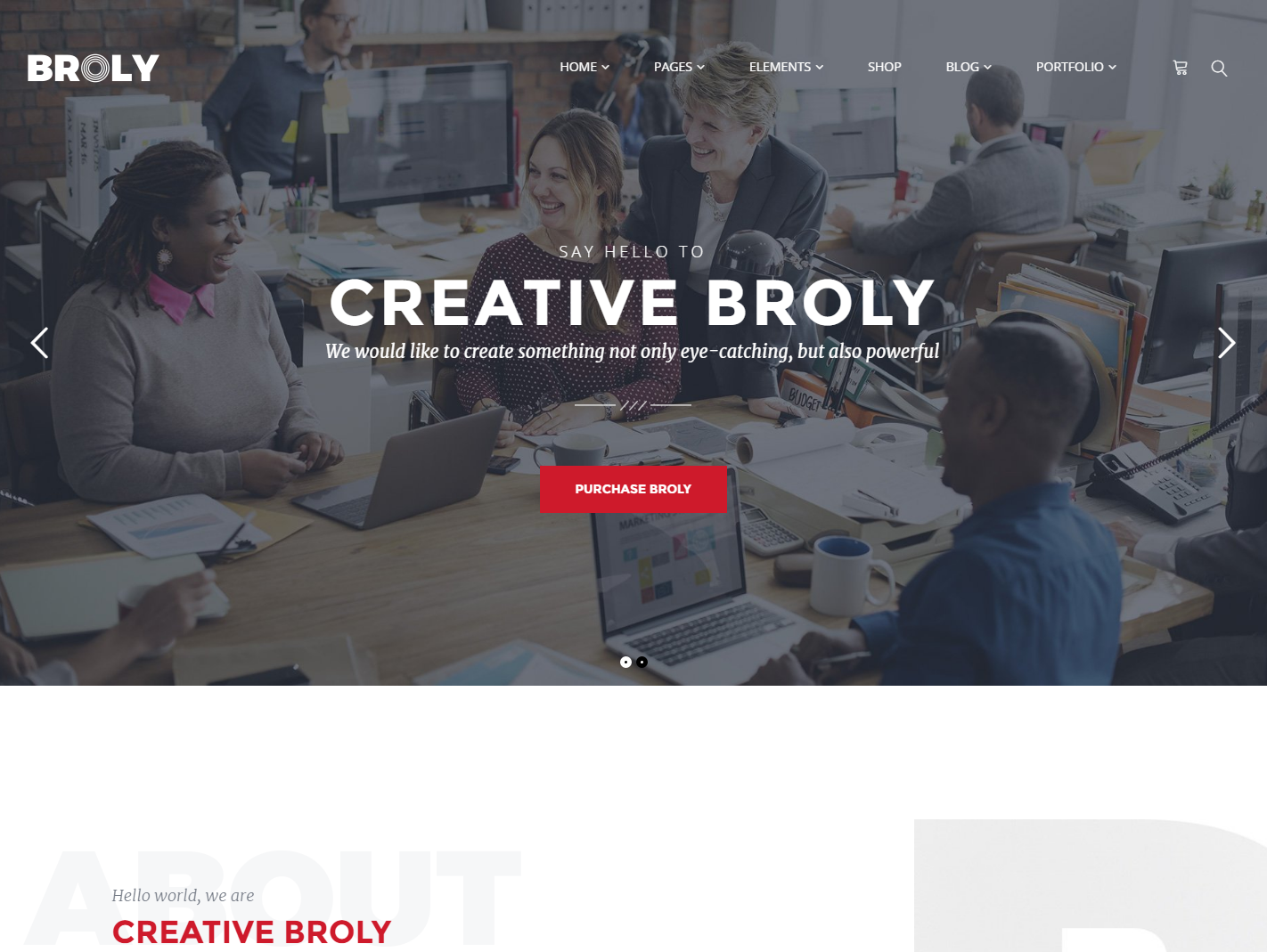broly-premium-wordpress-theme