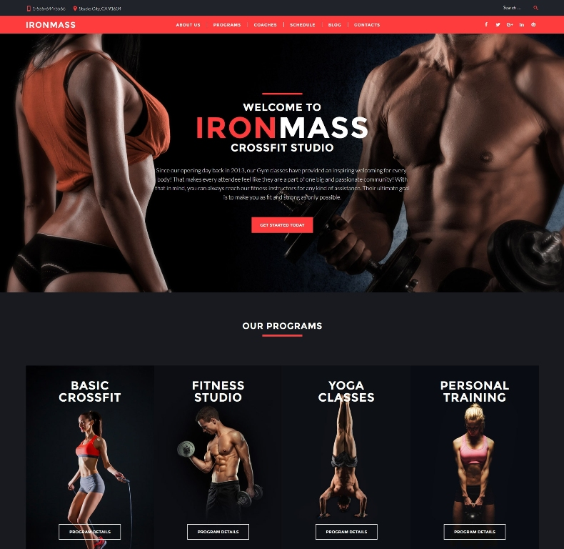 ironmass-premium-wordpress-theme