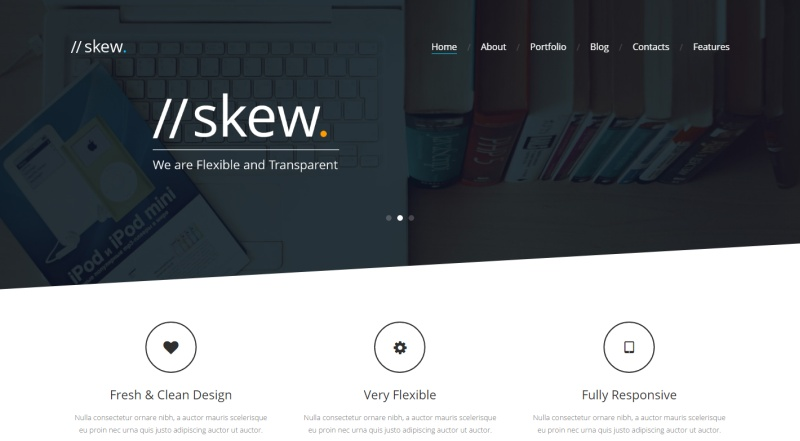 skew-premium-wordpress-theme