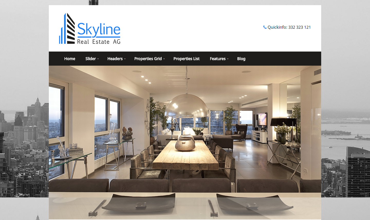 skyline-premium-wordpress-theme