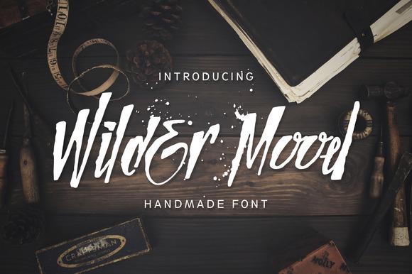 wilder-mood-premium-script-font