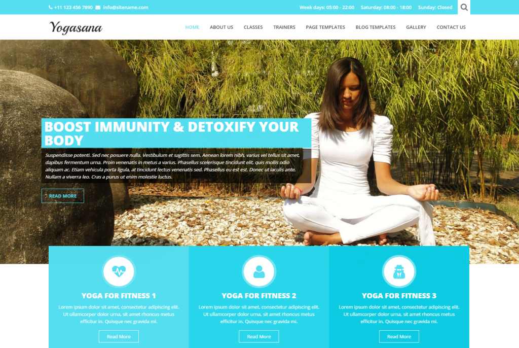 yogi-lite-free-wordpress-theme