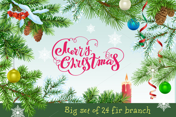 big-set-of-24-fir-branch-premium-vector
