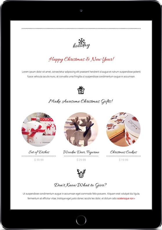 happy christmas and new year premium email template