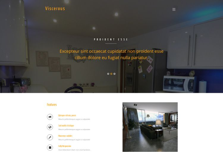 viscerous-free-html-template