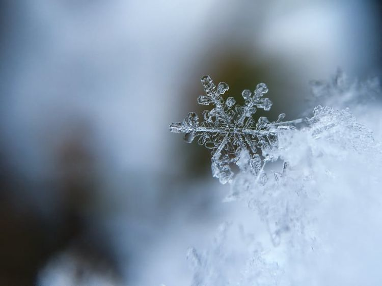Snow Flakes Macro Photography - Free Stock Photo