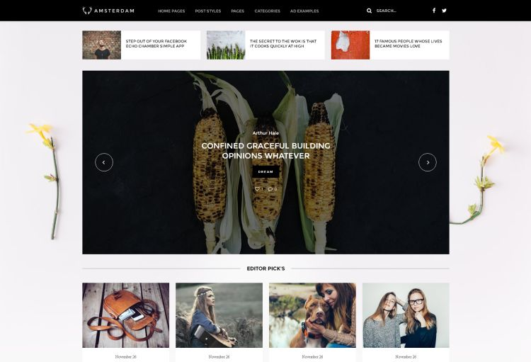 amsterdam-premium-wordpress-theme