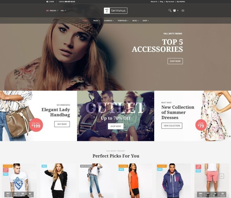terminus-premium-wordpress-theme