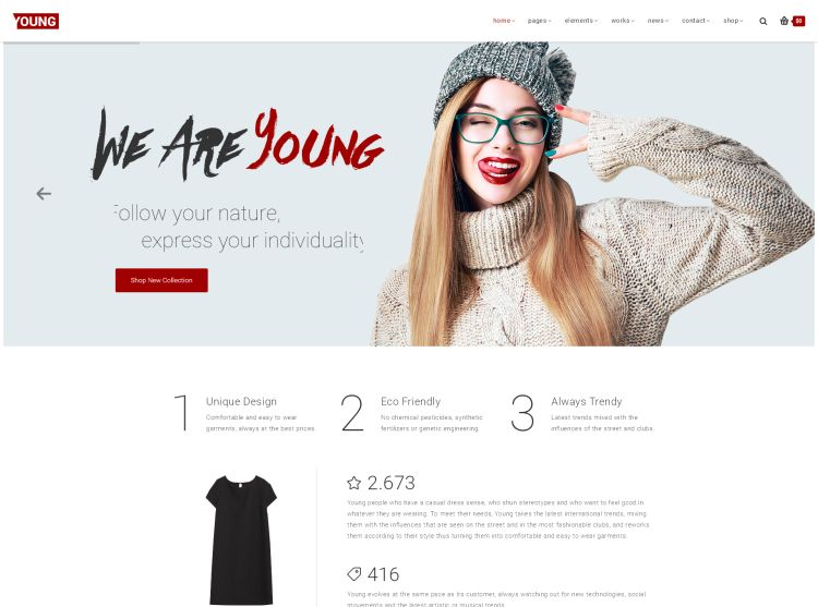 young-premium-wordpress-theme