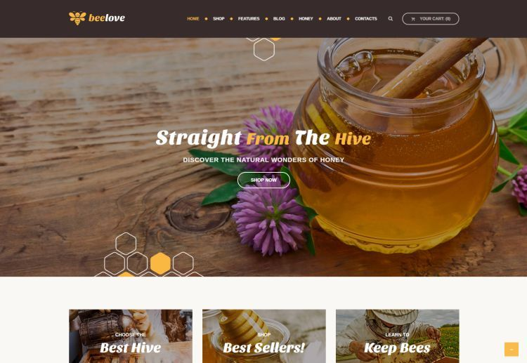 beelove-premium-wordpress-theme