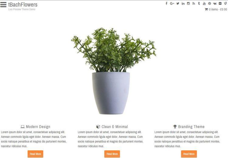 fbachflowers-free-wordpress-theme