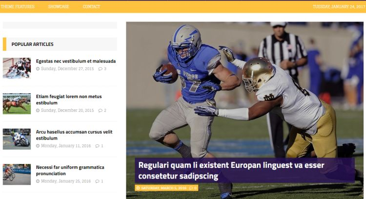 mhsportsmagazine-free-wordpress-theme