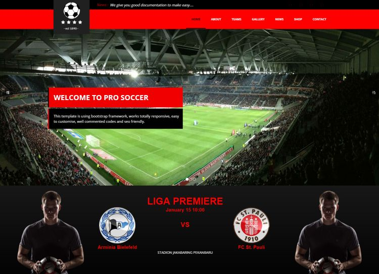 pro-soccer-premium-wordpress-theme