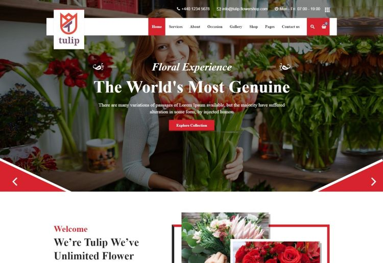 tulip-premium-wordpress-theme