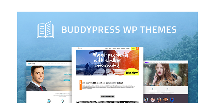 BuddyPress WordPress Themes for Forums, Portals, and More