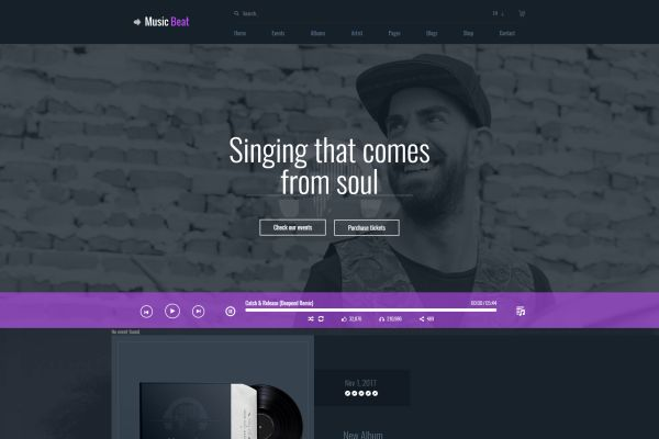 Music and Bands WordPress Themes for Summer 2017   GT3 Themes
